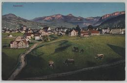 Appenzell - Generalansicht - Photo: Carl Künzli - AI Appenzell Rhodes-Intérieures