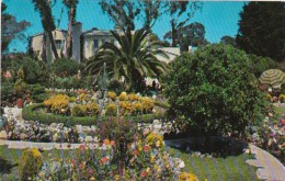 California Pacific Palisades Residential Scene With Beautiful Fl