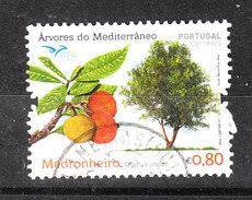 Portogallo   Portugal  -   2017. Frutta E Albero. Fruits And Tree - Fruits
