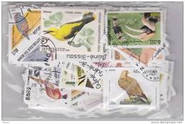 Lot Varié De + De 230 Timbres Du Monde Différents Thème OISEAUX - BIRDS - PAJAROS - VÖGELS - Colibris