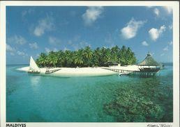 (V) Maldives - Photo Michael Friedel - Carte 15,3 X 11 - Maldives