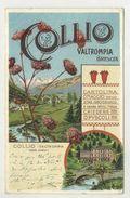 COLLIO, Valtrompia, Brescia - Grand Hotel Mella, Vista Parziale, Panoramica  ( 2 Scans ) - Brescia