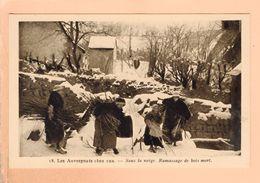 Cpa  Carte Postale Ancienne  - Les Auvergnats Chez Eux Sous La Neige Ramassage De Bois Mort 18 - Auvergne