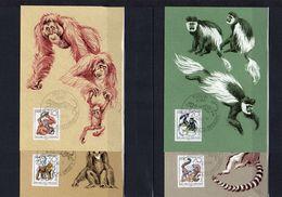 DDR, 1986, Michel 3019/22 MC, Dresdner Zoo - Maximum Cards