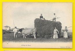 Enlévement Des Foins Traditions (ND Phot) Pyrénées Atlantiques (64) - Non Classés