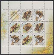 Russia 2004 M/S WWF W.W.F. Wolverine Bear Animals Mammals Bears World Wildlife Fund Organizations Stamps MNH Sc 6857 - W.W.F.