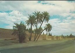MAROC---MARRAKECH---bab Doukala--voir 2 Scans - Marrakech