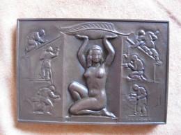 Médaille 1978. SYNDICAT DU BATIMENT Attribué à FRENOT  1987, Par J.H. Coëffin - France