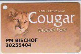 CASINO CARD - 300 - USA - COUGAR CASINO - Casino Cards