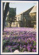 POULTON-LE-FYLDE LANCASHIRE - Church Of St. Chad - Inghilterra