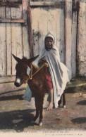 Algeria Scenes Et Types Jeune Arabe El Son Ane Young Girl On Donkey - Algeria