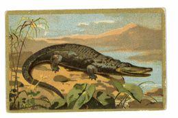 CHROMO IMAGE BLEDINE JACQUEMAIRE SERIE LES ANIMAUX LE CROCODILE - Trade Cards