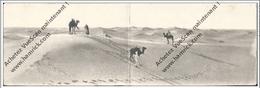 CPA CARTE PANORAMIQUE Bedouin Dans Le Désert Format 27.8 Cm /9 Cm - Algeria
