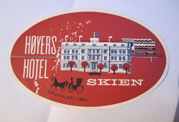 HOTEL MOTEL PENSION HOYERS SKIEN HORSE CARRIAGE NORWAY OLD TAG STICKER DECAL LUGGAGE LABEL ETIQUETTE AUFKLEBER - Etiketten Van Hotels