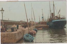 Egypte Alexandrie  Ou Alexandria  Embarcadere  De La Compagnie  Des Messageries  Maritimes - Alexandrie