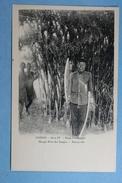 Congo Série IV Dans L'Oubanghi Mango Rois Des Sangos Banzyville - Autres