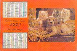 (FRANCE) Ville De SAVIGNY SUR ORGE -calendrier Des éboueurs 1992 - Calendriers