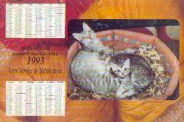(FRANCE) Ville De SAVIGNY SUR ORGE -calendrier Des éboueurs 1993 - Calendriers