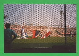 Sport Calcio Vicenza Supporter Del Lanerossi  Stadio Romeo  Menti - Sport