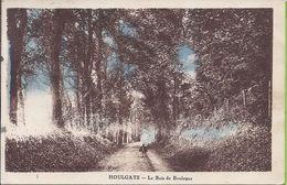 -- 14 -- HOULGATE --LE BOIS DE BOULOGNE -- PETITE ANIMATION --  1905 -- CARTE COLORISEE - Houlgate