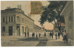 Pancsova Starcsoval-ut Edit Kohn Samu. To Cuba 1908 - Serbia