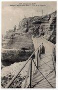 Saint Palais Sur Mer : Pont De La Corniche (Cliché Braun, N°1892) - Saint-Palais-sur-Mer