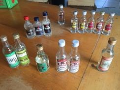 Lot De  15  Mignonettes De Vodka - Miniatures