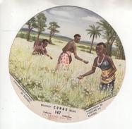 """Chromo N°147 """"La Vache Qui Rit"""". Série Congo Belge. Plantation De Pyrethre Au Ruanda (2). Vertaling Zie Chromo - Chromos"""