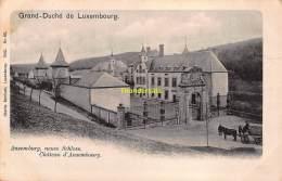 CPA GRAND DUCHE DE LUXEMBOURG ANSEMBURG NEUES SCHLOSS CHATEAU D'ANSEMBOURG - Dudelange