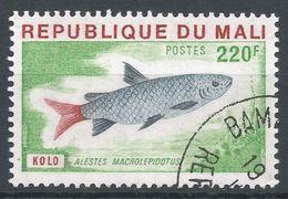 Mali 1976. Scott #260 (U) Alested Macrolepidotus, Fish, Poisson - Mali (1959-...)