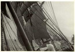 HERZOGIN CECILIE    +- 15*  11CM  REAL PHOTOGRAPH BOAT BARCO  BOAT Voilier - Velero - Sailboat - Barche