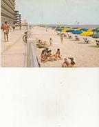 Virginia Beach - Virginia Beach