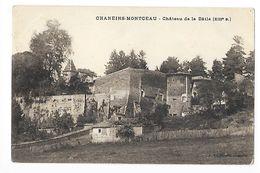 CHANEINS-MONTCEAU  (cpa 01)    Château De La Bâtie (XIII° Siècle) -   - L 1 - Francia