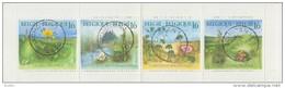 BELGIË/BELGIQUE :1994: Carnet 25 (Y.2572-75) : Gestempeld/Oblitéré:  PLANTES,FLORA, - Carnets 1953-....