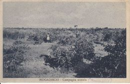 MOGADISCIO - CAMPAGNA SOMALA - POUR LA SARRE UNION 1936 , SANS LE TIMBRE ! - Somalie