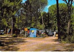 ITALIA Italie ( Toscana - Grosseto ) PUNTA ALA Camping : Viali E Tende In Pineta - CPSM GF 1971 -  Italy - Grosseto