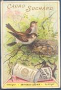 Chromo Chocolat Fabrique R Suchard Neuchâtel Suisse Cacao Rossignol Oiseau Nachtigall Erithacus Luscinia - Suchard