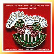 SUPER PIN'S CEPAGE Du TROUSSEAU : Vignoble Du JURA à MONTIGNY Les ARSURES (Vigne De LOUIS PASTEUR) Signé DIMO, 2,8X2,3cm - Beverages