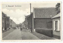 Blaasveld - Broekstraat (Willebroek) - Willebroek