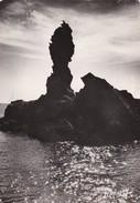 84 BELLE ILE EN MER                                Le Pilor                                 Timbree - Belle Ile En Mer