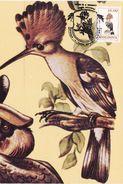 1993 - BIRDS - HOOPOE (Upapa Epops) - Moldawien (Moldau)