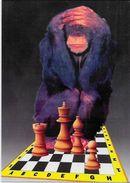 CPM échecs Chess Non Circulé Singe Monkey - Echecs
