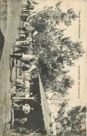CHEVAL    CAMP DE COETQUIDAN      MARECHAL FERRANT - Pferde