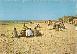 CP - SAINTE-CECILE PLAGE - LA PLAGE- N°62 S65 122 - EDIT. SOFER - OBLIT. CAMIERS 8.8.1973 - Francia
