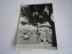 17  CHARENTE MARITIME - ÎLE D'OLÉRON : LA COTINIÈRE 363. LE PORT PHOTO EDITION DES SEPTFONTS CAUSSE DE LA SELLE HERAULT - Ile D'Oléron