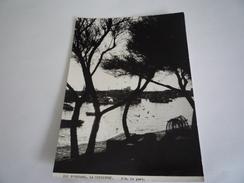 17  CHARENTE MARITIME - ÎLE D'OLÉRON : LA COTINIÈRE 359. LE PORT PHOTO EDITION DES SEPTFONTS CAUSSE DE LA SELLE HERAULT - Ile D'Oléron