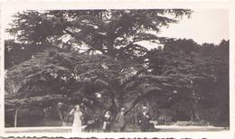 PHOTO JARDIN DE LA FONTAINE NIMES AVRIL 1934 11 X 7 CM - Lieux