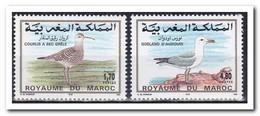 Marokko 1994, Postfris MNH, Birds - Marokko (1956-...)