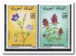 Marokko 1992, Postfris MNH, Flowers - Marokko (1956-...)
