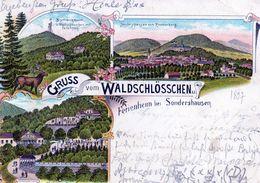 Thuringen, Sondershausen, Gruss Aus Waldschlösschen Ferienheim, Litho Trois Vues - Sondershausen